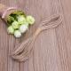 """Augalų ir glėlių tvirtinimo virvė """"profesionalas"""" (10 metrų)"""