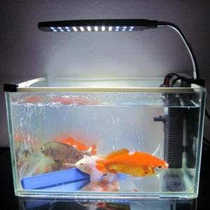"""Akvariumo LED šviestuvas """"Nuostabi šviesa"""""""