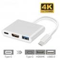 USB 3.1 į USB 3.1, HDMI ir USB 3.0 šakotuvas