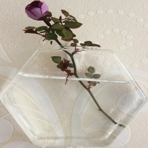 """Pakabinama stiklinė vaza """"Stiliaus elegancija"""""""