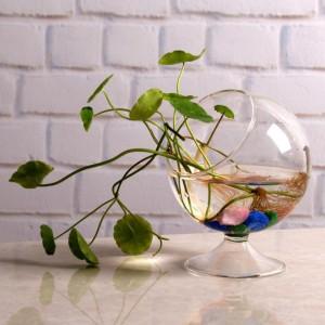 """Pakabinama stiklinė vaza """"Naujoji elegancija"""""""