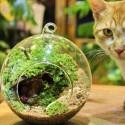 """Pakabinama stiklinė vaza """"Puikusis burbulas"""""""