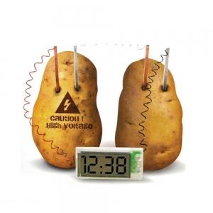 """Laikrodis """"Bulvės energija"""""""