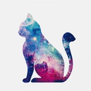 """Lipdukas """"Kosminis katinukas"""" (11.7 x 14.2 cm)"""