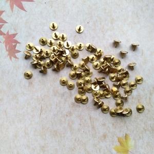 """Sieninio laikrodžio rodyklės detalės """"Auksiniai segtukai"""""""