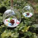 """Pakabinama stiklinė vaza """"Puikusis burbulas 2"""" (10 x 10 cm)"""