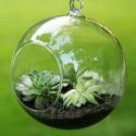 """Pakabinama stiklinė vaza """"Puikusis burbulas 3"""" (15 x 15 cm)"""
