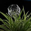 """Įsmeigiama stiklinė vaza """"Puikioji rožė"""" (27 x 8 cm)"""