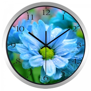 """Sieninis laikrodis """"Nuostabioji gėlelė"""""""